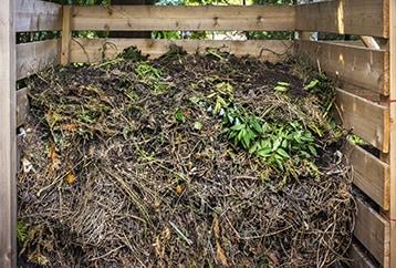 Bin filled with yard debris